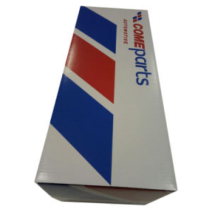 Custom Printing Cardboard Shipping Box pictures & photos