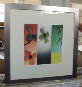 Picture Frame (IMG_1664)