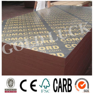 Combi Core 18mm Film Faced Plywood pictures & photos