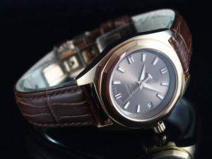 2010 Brand New Imitation Watch