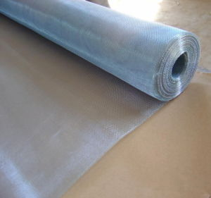 Electro Galvanized Aluminum Wire Netting for Porches Guards Industrial Purpose Doors pictures & photos
