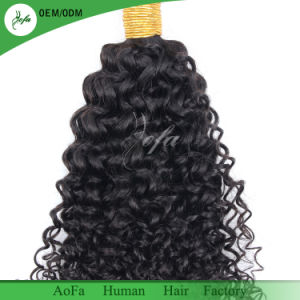 Top Quality 100% Unprocessed Hair Brazilian Virgin Human Hair Curly pictures & photos