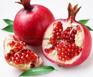 Ellagic Acid CAS No 476-66-4 Pomegranate Peel Extract pictures & photos