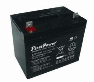 Military Equipment Battery (LFP1285) pictures & photos