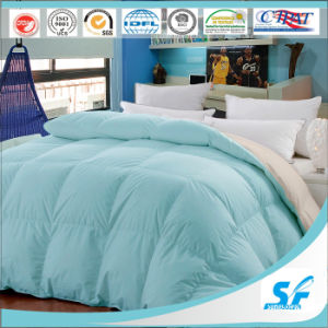 Solid Colour Soft and Warem Polyester Quilt pictures & photos
