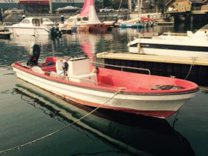 China Aqualand 19feet 23feet 5.8m 7m Panga Boat/Sports Fishing Boat/Motor Boat (230) pictures & photos