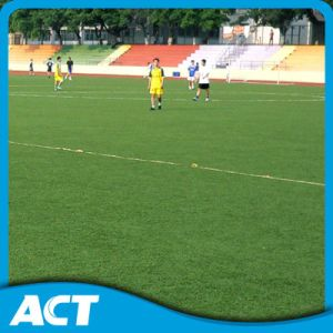 Synthetic Turf for Football Fifa Certificated pictures & photos