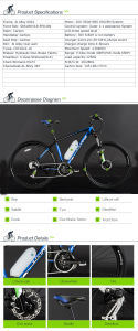 2015 Hot Sale Electric Bicycle with En15194 pictures & photos