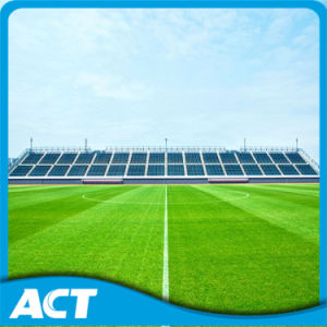 Synthetic Turf for Football, High Quality and Durable pictures & photos