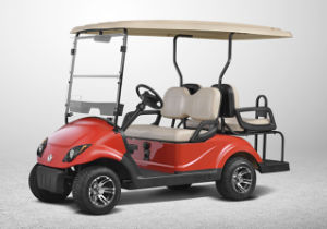 Electric Golf Car for 2+2 People Made by Dongfeng (EQ9022)
