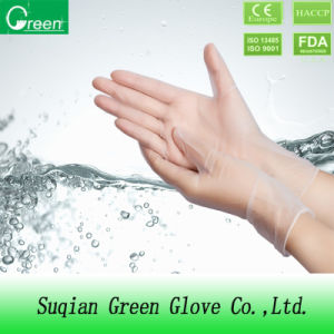 Clear Single Use Vinyl Glove pictures & photos