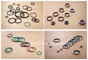 Edpm/FKM Rubber Seals pictures & photos
