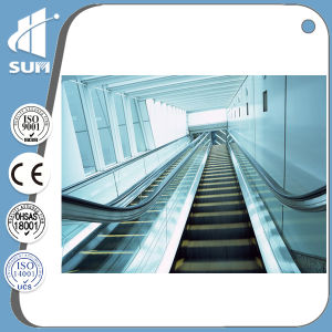 Indoor Escalator of 35 Degree Step Width 600 800 1000mm pictures & photos