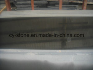 Facory Pirce Mongolian Black Granite Slab for Project/Tombstone/Cut to Size pictures & photos