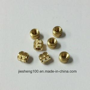 Round Brass Nut Manufacturer