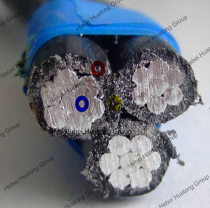 Aerial Bundled Cable, ABC Cable, Overhead Cable, ASTM, BS, Nfc, IEC, DIN Standard pictures & photos