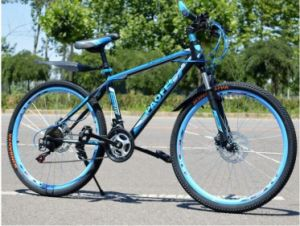 High Quality MTB Folding Bike for Sale pictures & photos