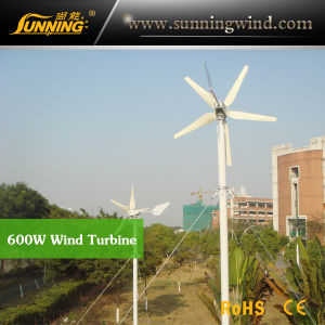 Residential Wind Generator 600W DC Motor Wind Turbine Home Use