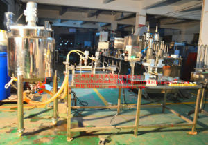 Bottle Ketchup Filling Machine with Mixer & Packaging Line pictures & photos