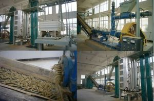 Rice Bran Oil Manufacturing Plant pictures & photos