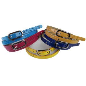 Women′s Fashion Stud Belt (ZB4060)