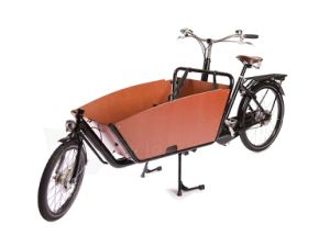 Electric Cargo Tricycle Bike with Lithium Battery pictures & photos