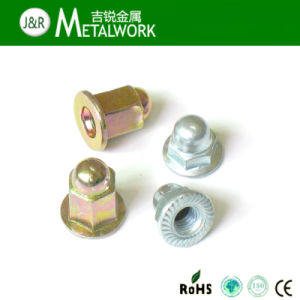 Zinc Plated Hex Flange Dome Cap Nut for Car pictures & photos