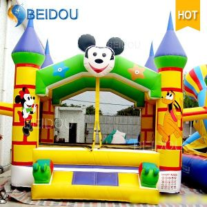 Durable Popular Mickey Mouse Jumping Bouncy Castle Frozen Inflatable Bouncer pictures & photos