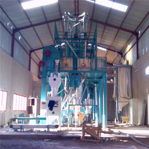 Flour Mill Machine for Wheat/Maize/Corn (6FTF-60) pictures & photos