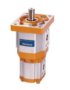 Hydraulic Double Gear Oil Pump Cbqt-E563/F410 pictures & photos