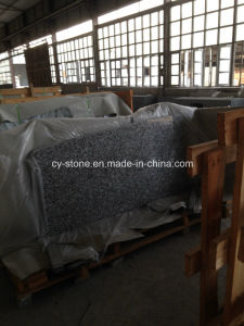 Chinese G439 Cream Pearl Granite Kitchen Countertops in USA Hotel Project pictures & photos