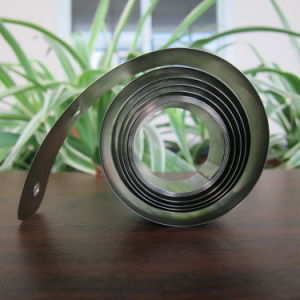 Large Coil Power Spring for Display Shelf Pusher pictures & photos