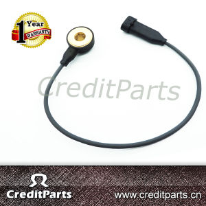Auto Electrical Knock Sensor 10456240 8104562400 for Chevrolet Daewoo Opel pictures & photos