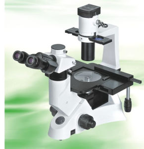 Inverted Biological Microscope Nib-100 with Infinite Optical System pictures & photos