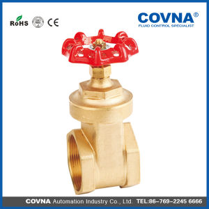 Cheap Brass Gate Valve with Iron Handle pictures & photos