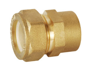 Brass Pipe Fitting with Reducing Straight Union Bf-15002 pictures & photos