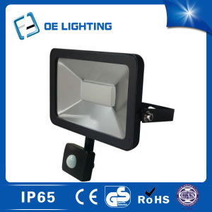 Hot Selling 30W LED Floodlight with Sensor pictures & photos
