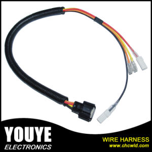 Customized Home Appliance Electrical Machine Wire Harness Motor Power Supply Cord pictures & photos