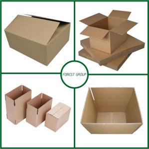 Fancy Corrugated Kraft Paper Box with Logo pictures & photos
