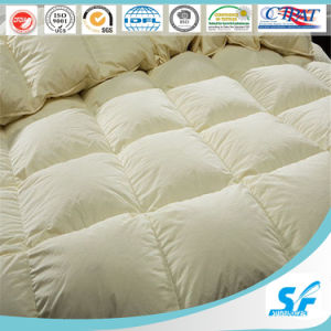 High Top Quality Silk Duvet Cover Bedding Set pictures & photos