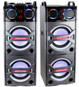 Double 10inch Bluetooth PA Loudspeaker Karaoke Entertainment System, Wireless Mic E246 pictures & photos