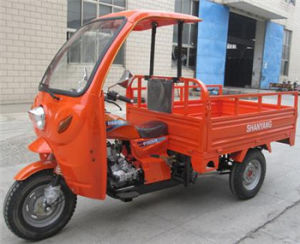 250cc Closed Three Wheel Motorcycle Tricycle with Cabin pictures & photos