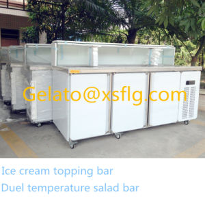 Hot Sale Stainless Steel Salad Bar Xsflg pictures & photos