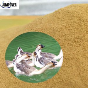 China 2016 New Products Seaweed Powder for Pet Feed pictures & photos