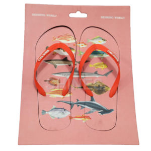 Fish Print Chopping Board Flip Flop Slippers pictures & photos