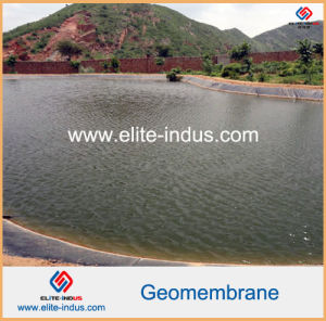Flat Roofing Waterproof Membrane HDPE Geomembrane White Color pictures & photos