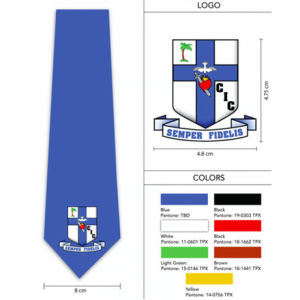 Custom Made Logo Polyester Nigeria School Tie (A777) pictures & photos