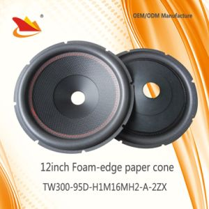 2017 PA Speaker Parts 12inch Paper Cone - Speaker Cone pictures & photos