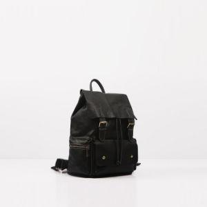 Al8843. Leather Backpack Ladies′ Handbag Designer Handbags Fashion Handbag Leather Handbags Women Bag pictures & photos