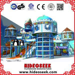 Frozen Snow Theme Naughty Castle Kids Indoor Playground Equipment pictures & photos